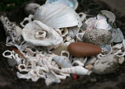 Lavapot shells
