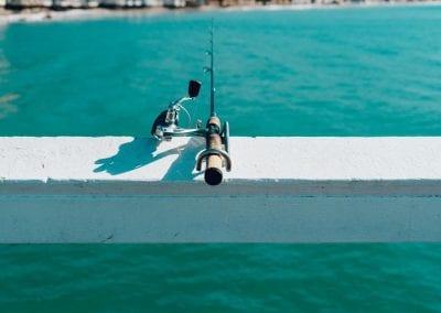 Noosa Fishing