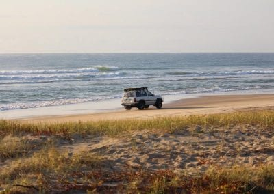 Fraser Island Trips