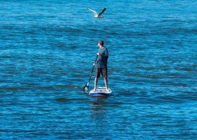 Noosa Standup Paddle