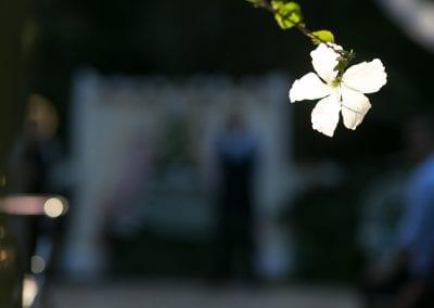 Romantic Garden ceremony